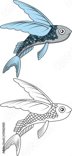 Fotografia flying fish cartoon