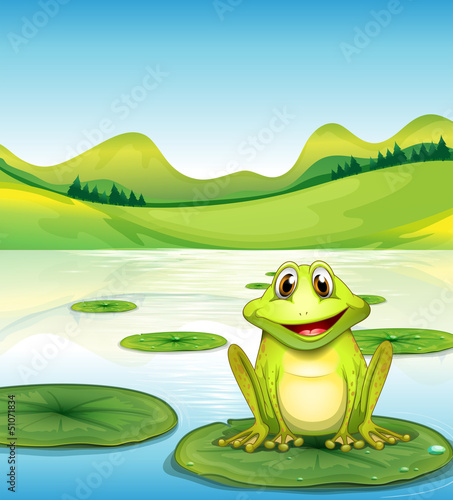 Canvas Prints River, lake A frog above the waterlily in the pond