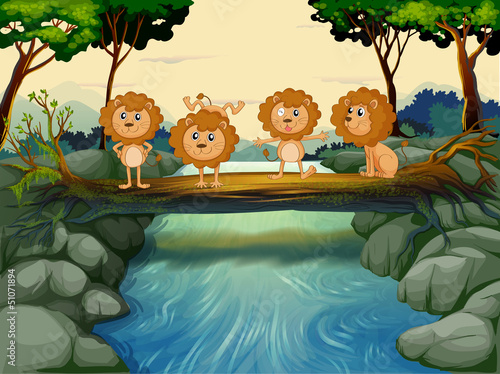 Canvas Prints River, lake Four young lions at the river