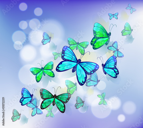 Deurstickers Vlinders Butterflies in a stationery