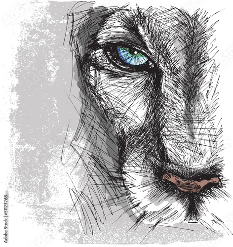 Tuinposter Hand getrokken schets van dieren Hand drawn Sketch of a lion looking intently at the camera