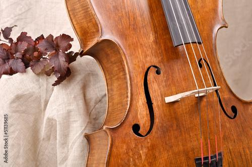 Leinwand Poster Detail of the cello