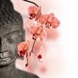 Leinwandbild Motiv Bouddha et orchidée rouge