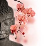 Bouddha et orchidée rouge