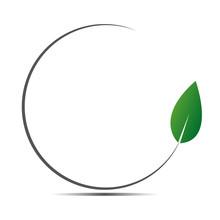 Green Frame With Fresh Leaf