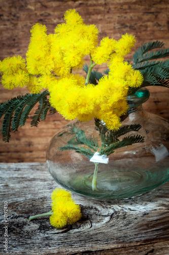 szklany-wazon-z-zolta-tropikalna-roslina-mimoza