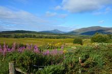 View Of Mountains From The Commando Memorial Near Spean Bridge