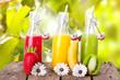 canvas print picture - frische Fruchtsäfte im Frühling