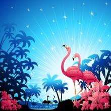 Pink Flamingos On Blue Tropics-Fenicotteri Rosa
