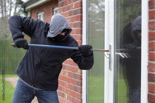 Cuadros en Lienzo  Burglar