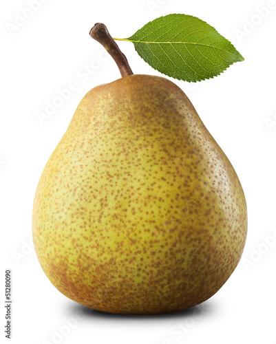 Slika na platnu Ripe pear