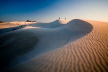 Dune Di Porto Pino, Teulada, S...