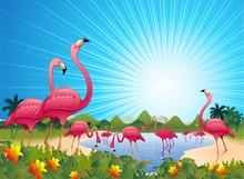Pink Flamingos On Tropical Lag...
