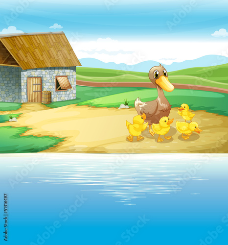 Printed kitchen splashbacks River, lake A family of duck near the river