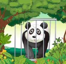 A Forest With A Panda Inside A Cage