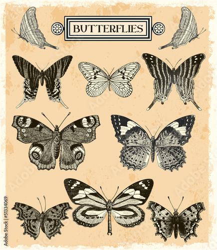 Foto op Aluminium Vlinders in Grunge Butterflies collection