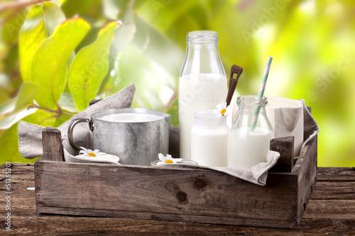 swieze-produkty-mleczne-w-ogrodzie