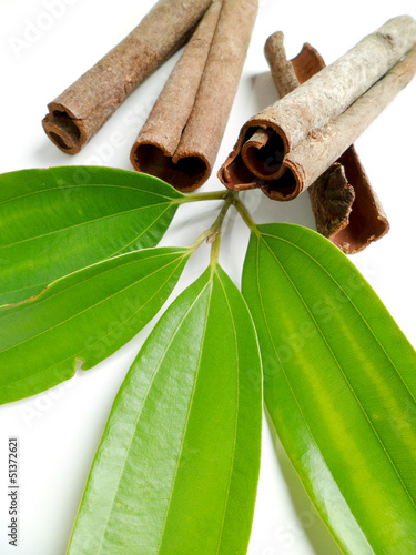 Cinnamon Tapéta, Fotótapéta