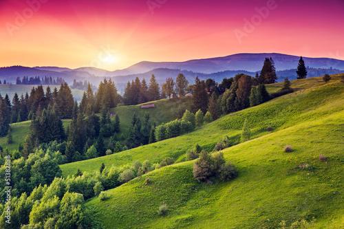 Poster Lime groen sunset