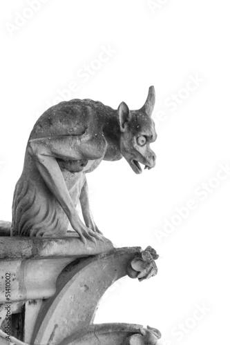 Fotografie, Obraz gargoyle of Notre Dame, Paris