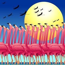 Pink Flamingos's Dance-La Danz...