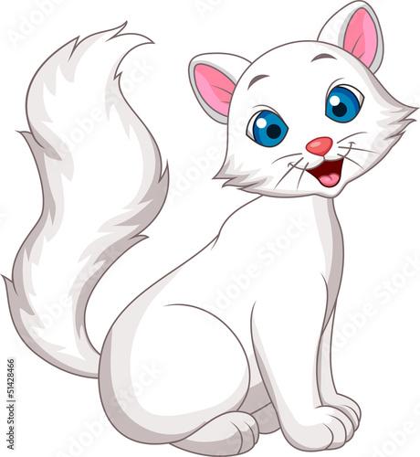 Printed kitchen splashbacks Cats Cute white cat sitting