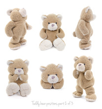 Teddy Bear Positions Part 2 Of 3