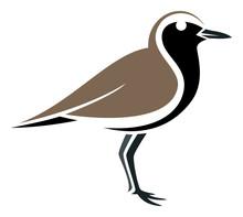 Stylized Bird --- Black-bellied Plover