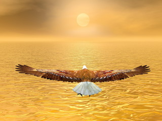 Fototapeta Eko Eagle going to the sun - 3D render