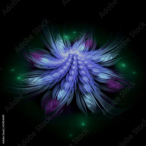 Fotobehang Fractal waves Fractal flower