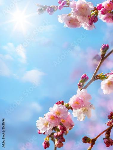 streszczenie-tlo-wiosna-kwiatowy