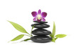 pink orchid and bamboo leaf with stones on white background