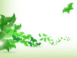 Environmental Background with leaf butterflies.