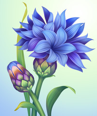 Obraz na Szkleillustration of cornflower with green leaves isolated