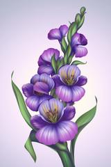 Plakat creative fantasy violet flower illustration