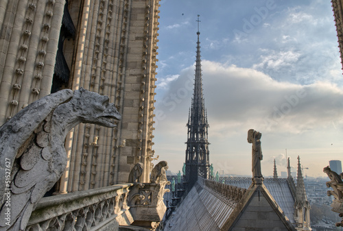Wonderful view of Paris from the top of Notre Dame Cathedral Poster 368930cbbd7