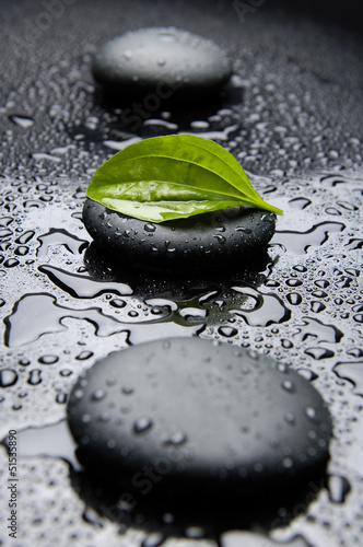 zielony-lisc-wiosna-z-kamieni-zen