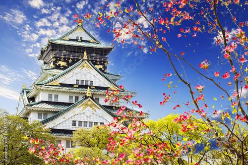 Naklejka premium Zamek w Osace do celów reklamowych lub innych