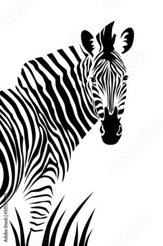 Naklejka na meble Zebra