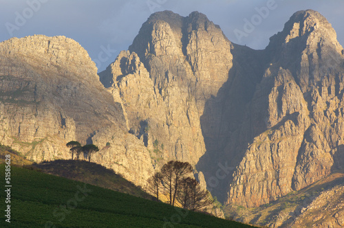 General view of landscape in Stellenbosch wine region, Western C