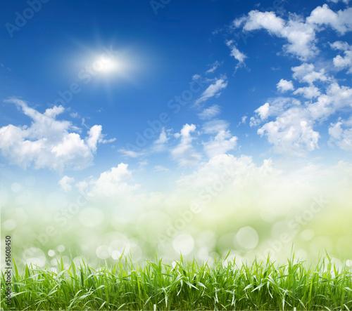 sky , grass,