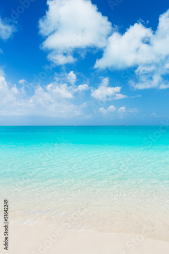 Staande foto Strand Tropical Beach