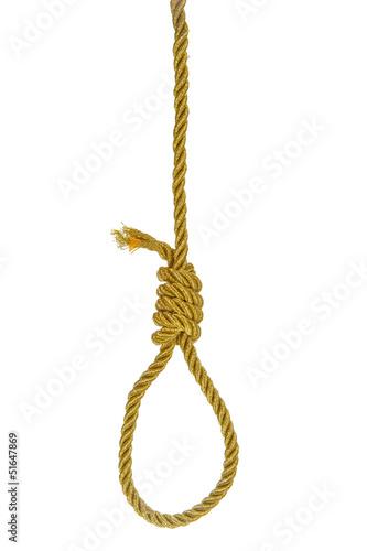 Slika na platnu Hanging noose on golden rope