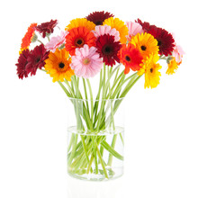 Bouquet Gerber Flowers In Glass Vase