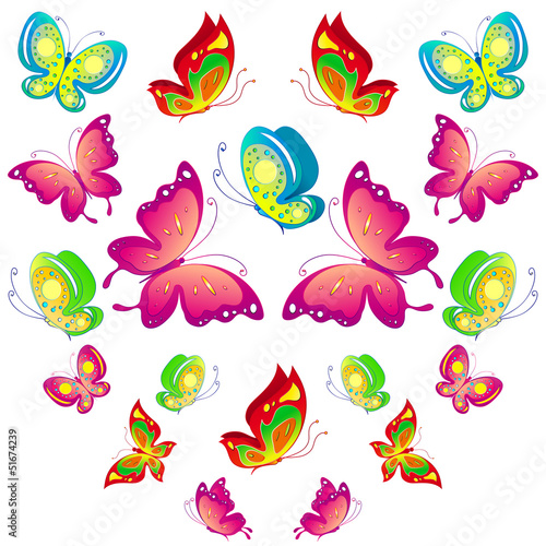 Door stickers Butterflies butterfly,butterflies vector