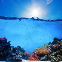 Underwater Scene. Coral Reef, Clean Water, Blue Sunny Sky