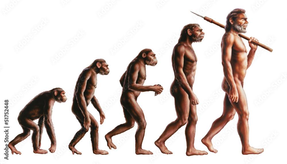 Fototapeta Evolution
