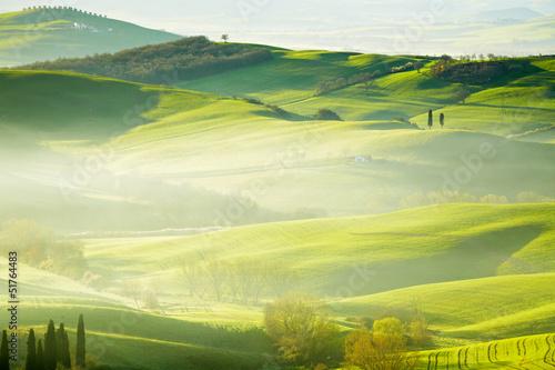 Canvas Prints Honey Countryside, San Quirico d´Orcia, Tuscany, Italy