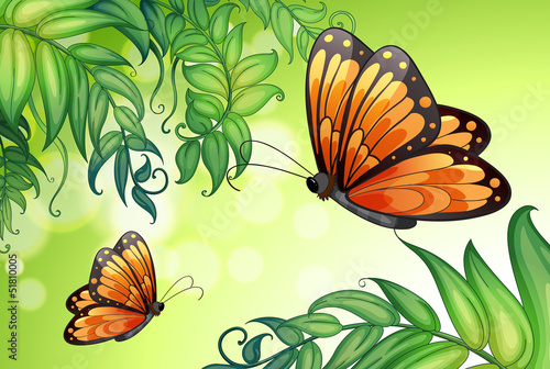 Tuinposter Vlinders A design with butterflies and plants