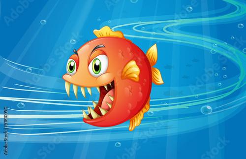 Obraz na plátne A red piranha under the sea